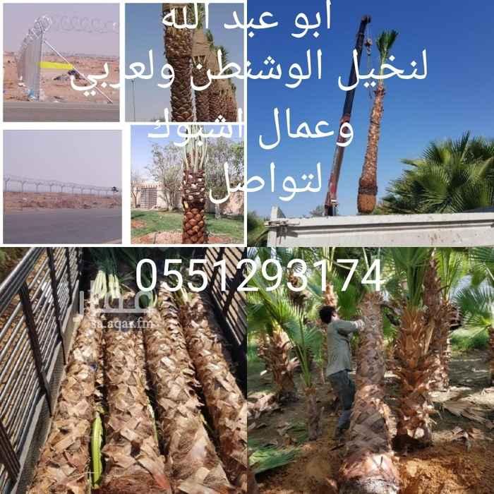 مزرعة للبيع في شارع الامام الشوكاني ، حي الدرعية الجديدة ، الرياض ، الرياض