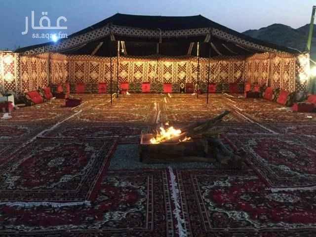مخيم للإيجار في بحرة