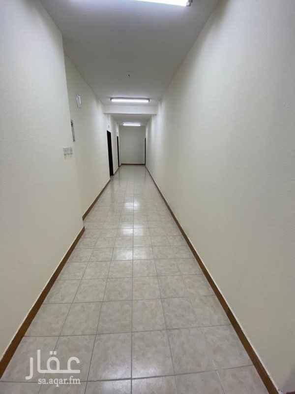 شقة للإيجار في شارع ال ريس ، حي الشميسي ، الرياض ، الرياض