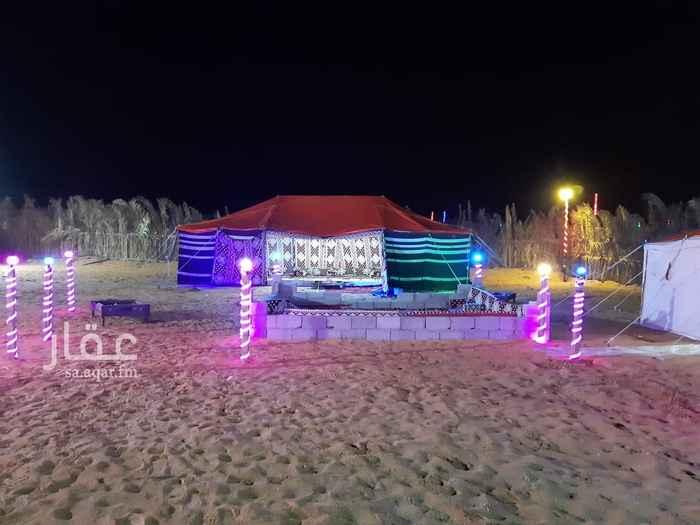 مخيم للإيجار في شارع محمد بن فرج ، الرياض ، الرياض