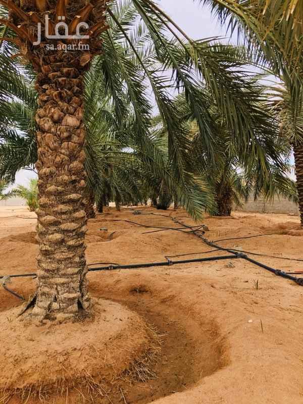 مزرعة للبيع في طريق الأمير نايف بن عبدالعزيز ، البدائع ، البدائع