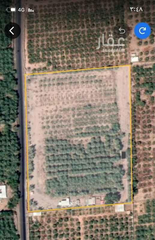 مزرعة للبيع في المدينة المنورة ، المدينة المنورة