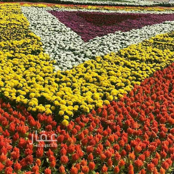 أرض للإيجار في حي الملك فهد ، مكة
