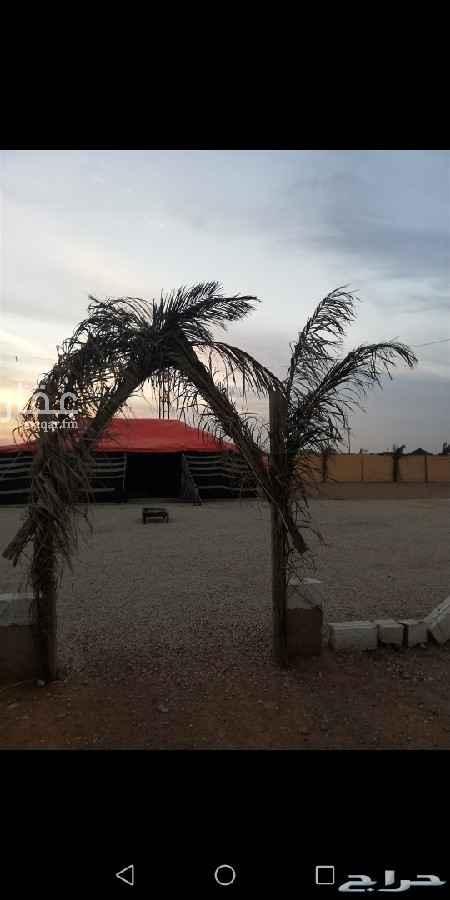 مخيم للإيجار في شارع ردمية ، الرياض ، الرياض