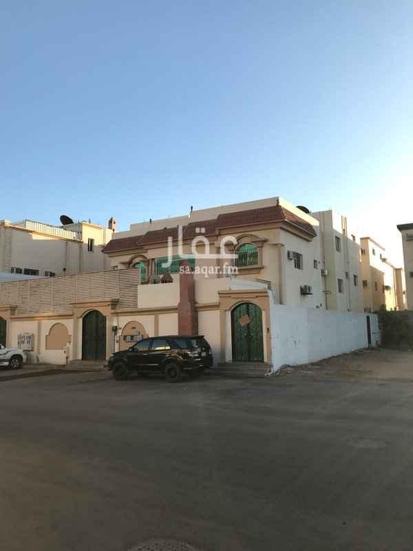 شقة للإيجار في شارع اوس بن خالد البخاري ، حي المروج - ب ، تبوك ، تبوك