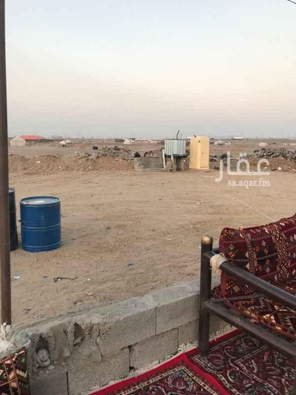 مخيم للإيجار في حي الخمرة ، جدة ، جدة