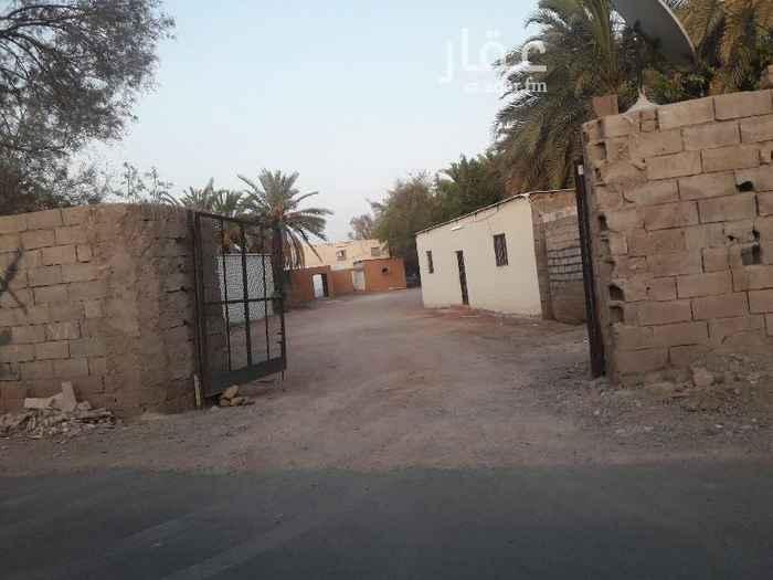 استراحة للإيجار في شارع محمد بن عثمان بن خالد ، حي البركة ، المدينة المنورة