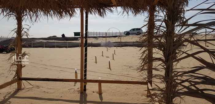 مخيم للإيجار في طريق الملك فهد ، الدمام ، الدمام