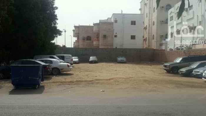 أرض للإيجار في شارع السامر ، حي السامر ، جدة