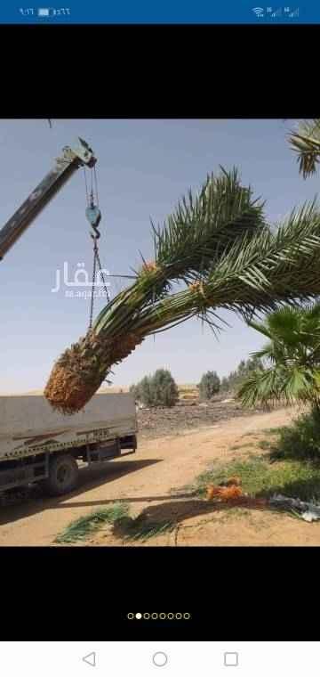 مزرعة للبيع في شارع الامام ، حي العزيزية ، الرياض