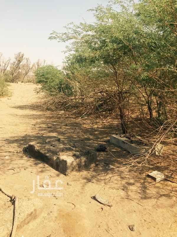 مزرعة للبيع في طريق شامية البشور