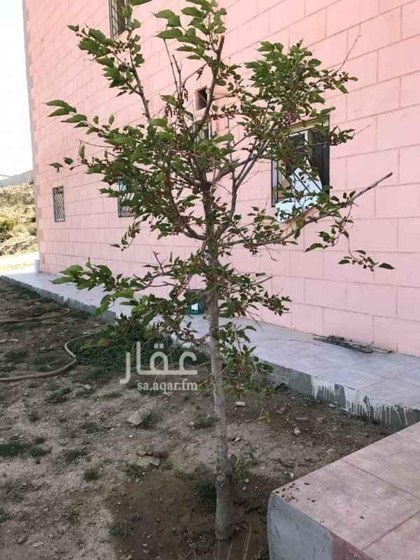 شقة للإيجار في شارع الملك فهد بن عبدالعزيز