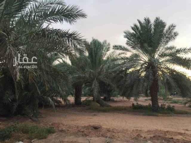 مزرعة للبيع في طريق مكة المكرمة ، تبراك