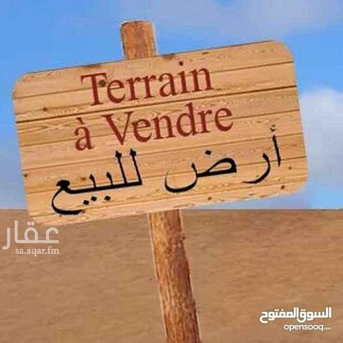 أرض للبيع في شارع جبل الصابح ، حي النخيل ، الرياض