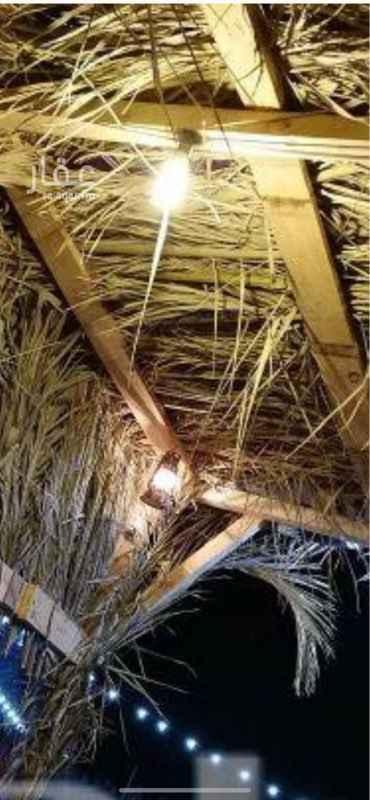 مخيم للإيجار في طريق الخرج ، حي الخالدية ، الرياض