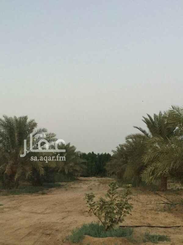 مزرعة للبيع في طريق الملك عبدالعزيز ، الخرج