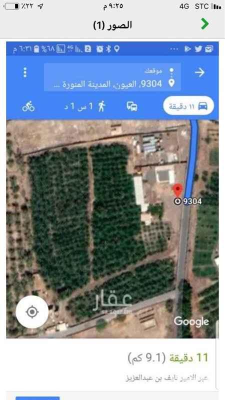 مزرعة للبيع في حي العيون ، المدينة المنورة ، المدينة المنورة