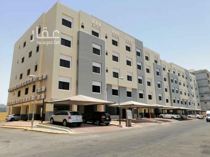 شقة للإيجار في شارع نسمات الربيع ، حي الرويس ، جدة
