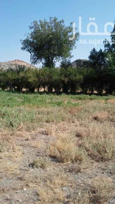 مزرعة للبيع في حي ج6 ، الطائف ، الطائف