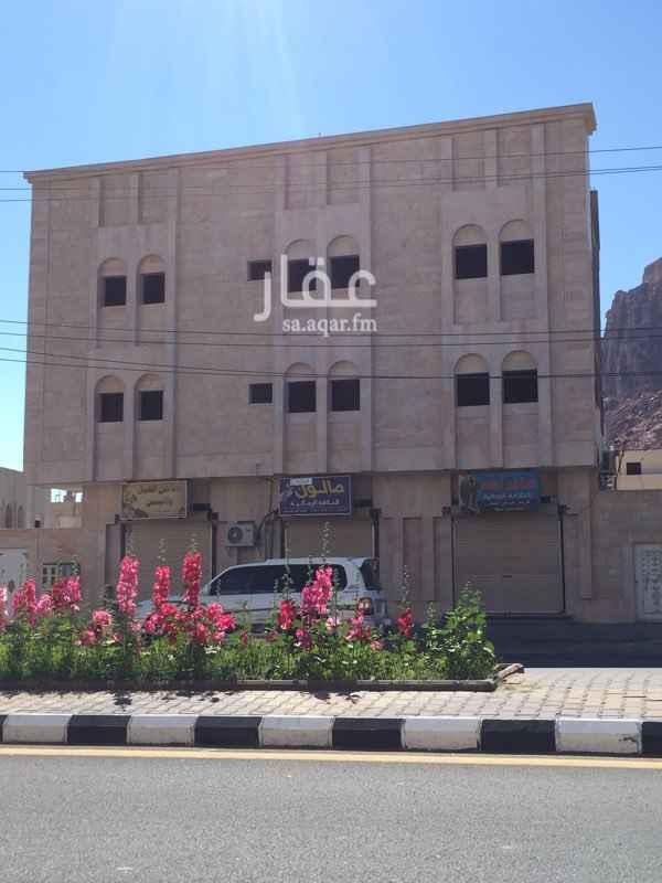 عمارة للإيجار في طريق الملك عبدالعزيز ، العلا