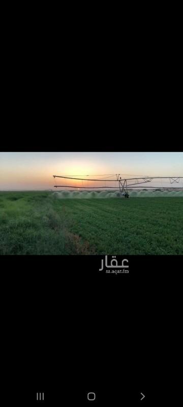 مزرعة للبيع في الدوادمى