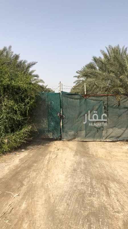 مزرعة للبيع في شارع أبو معن ، حي القادسية ، الدمام ، الدمام