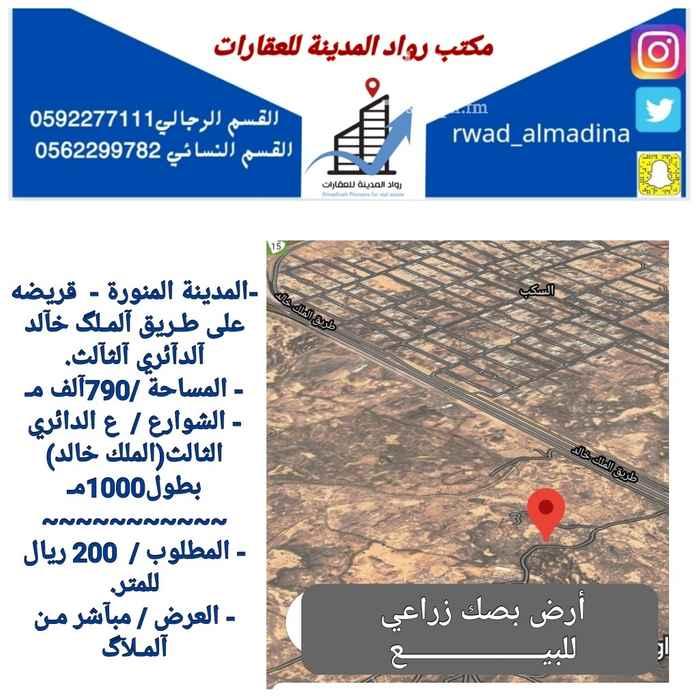 أرض للبيع في طريق الملك خالد ، حي السكب ، المدينة المنورة ، المدينة المنورة