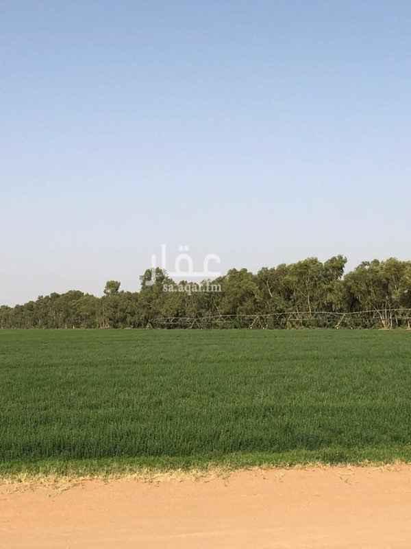 مزرعة للبيع في شارع عبدالصمد بن عبدالقادر ، حي حطين ، الرياض ، الرياض