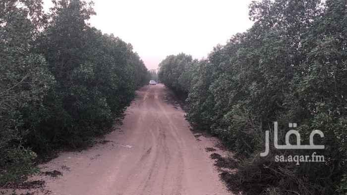 مزرعة للبيع في غران