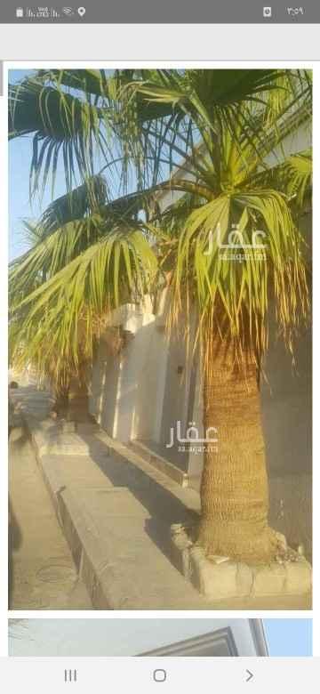 شقة للإيجار في شارع احمد الصقلي ، حي بدر ، الدمام