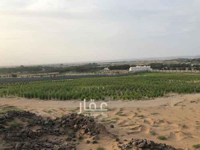 مزرعة للبيع في طريق عسفان ، ذهبان ، الجموم