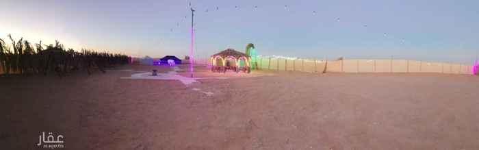 مخيم للإيجار في شارع محمد بن عبدالمؤمن ، حي مطار الملك خالد الدولي ، الرياض ، الرياض