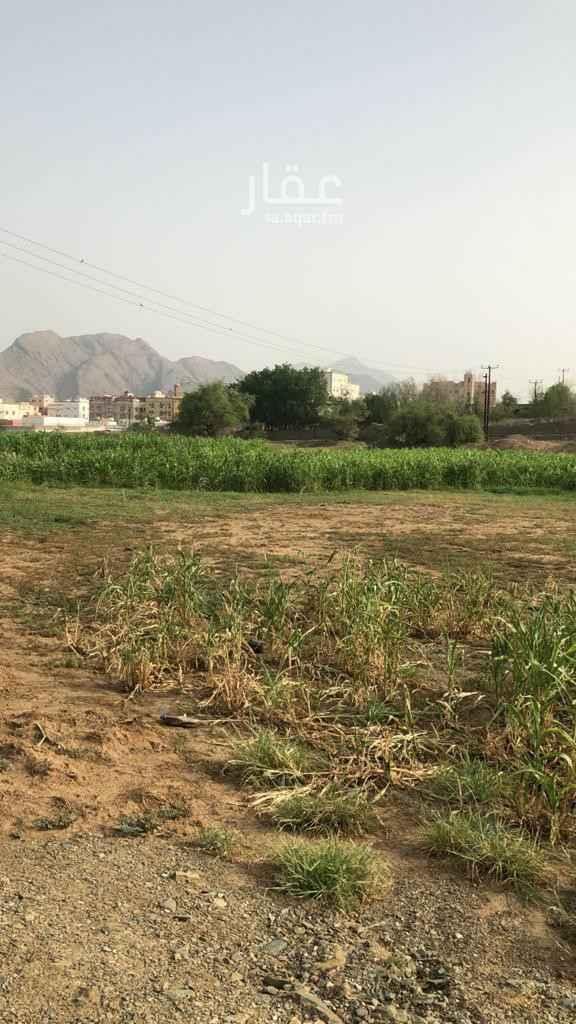 مزرعة للبيع في شارع سلمان الفارسي ، حي الضرس ، محايل عسير ، محايل