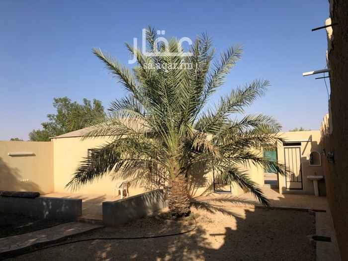 استراحة للإيجار في شارع مزرعة الجريسية ، حي بنبان ، الرياض ، الرياض