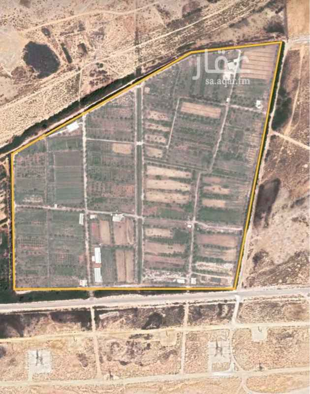 مزرعة للبيع في حي الفيحاء ، صفوى ، القطيف