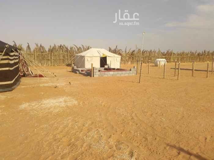 مخيم للإيجار في حي مطار الملك خالد الدولي ، الرياض