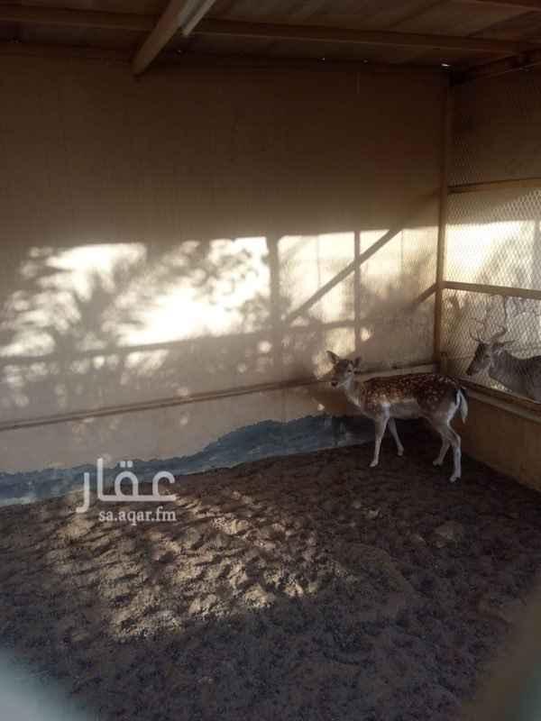 استراحة للبيع في حي ديراب ، الرياض