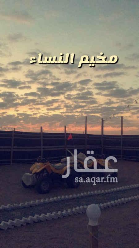 مخيم للإيجار في جدة ، الجموم