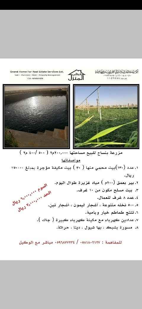 مزرعة للبيع في شارع عبدالقادر الجزائري ، حي الدار البيضاء ، الرياض ، الرياض