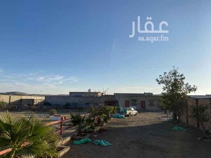استراحة للبيع في وادي ابن هشبل ، خميس مشيط