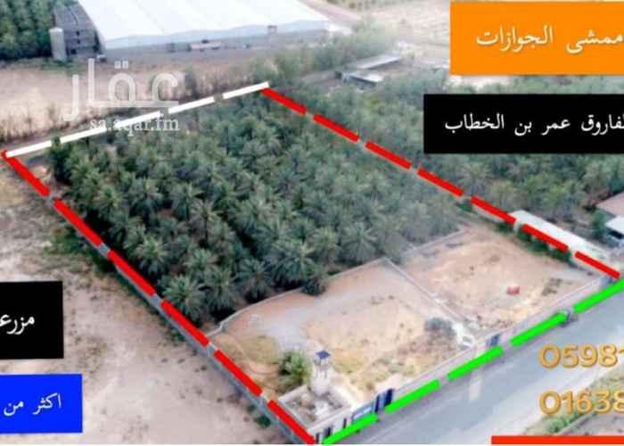 مزرعة للبيع في طريق الشيخ محمد بن عثيمين ، حي الزاهر ، عنيزة ، عنيزة