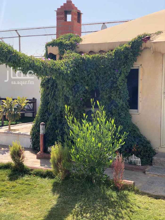 استراحة للإيجار في شارع وادي بيشة ، ضاحية نمار ، الرياض ، الرياض