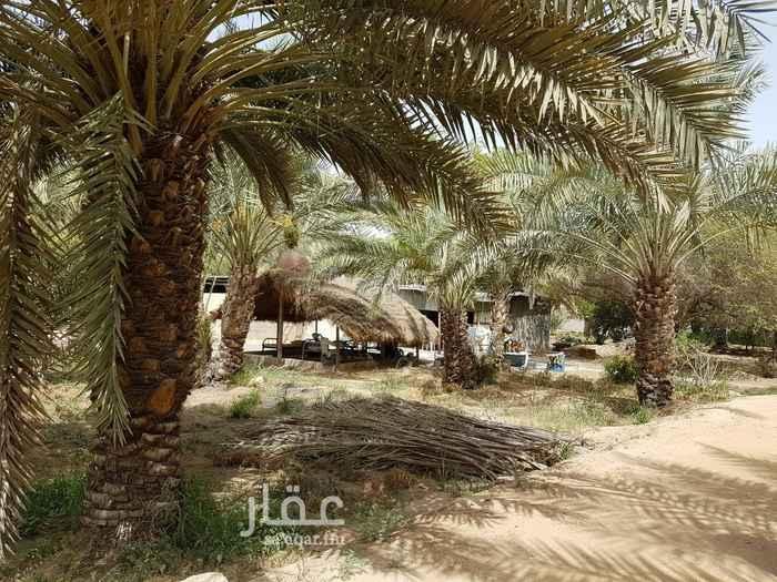 مزرعة للبيع في حي المصانع ، الرياض ، الرياض