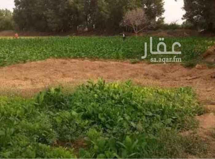 مزرعة للبيع في حي الحفيا ، المدينة المنورة ، المدينة المنورة