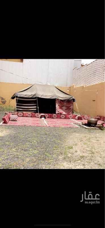 مخيم للإيجار في حي العرين ، أبها ، أبهــــا