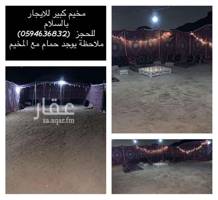 مخيم للإيجار في شارع هارون بن محمد بن هارون ، حي قلعة مخيط ، المدينة المنورة ، المدينة المنورة