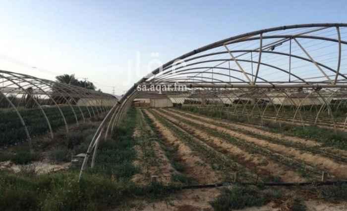 مزرعة للبيع في راس التنورة