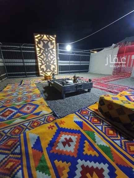 مخيم للإيجار في المدينة المنورة
