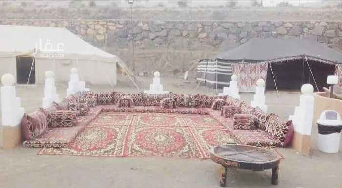 مخيم للإيجار في طريق الملك عبدالله ، أبها